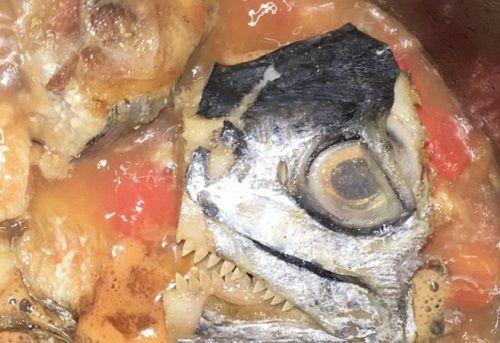 """Món """"cá thu tử thần"""" trên mạng xã hội, ai thấy cũng vừa sợ vừa buồn cười - Ảnh 2"""