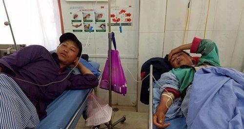 Sơn La: 9 người trong gia đình nhập viện vì ăn phải nấm độc - Ảnh 1