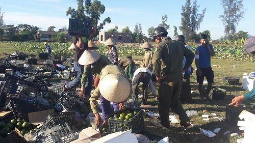 Lật xe container chở hơn 20 tấn hoa quả, dân đội nắng gom giúp tài xế - Ảnh 3
