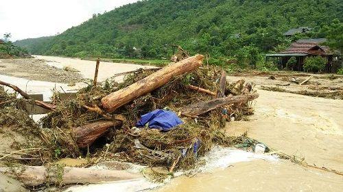 Xót xa khung cảnh nhà cửa tan hoang ở Nghệ An vì mưa lũ - Ảnh 10
