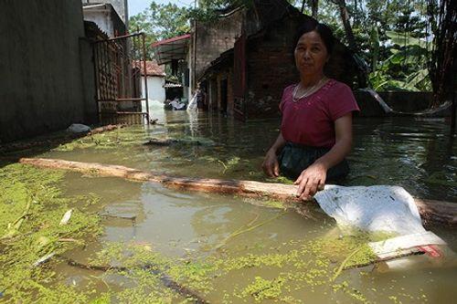 Chùm ảnh: Nước ngập đến cổ, người dân Thủ đô đưa lợn, gà lên nhà ăn ngủ cùng chủ - Ảnh 3