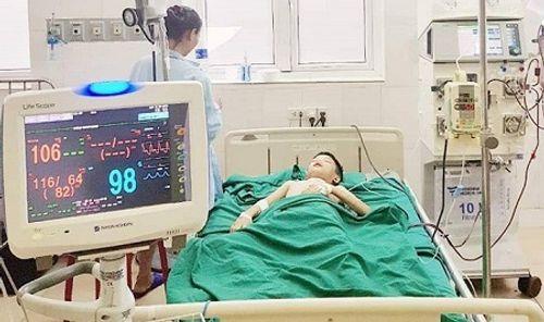 Nghệ An: Bé trai bị ong vò vẽ đốt hơn 100 nốt - Ảnh 1