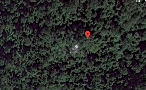 Tiết lộ bất ngờ về khu rừng nơi được cho là phát hiện buồng lái máy bay MH370 - Ảnh 1