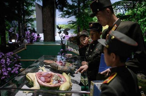 Chùm ảnh trường nam sinh tinh hoa của Triều Tiên khiến cả thế giới ngạc nhiên - Ảnh 5