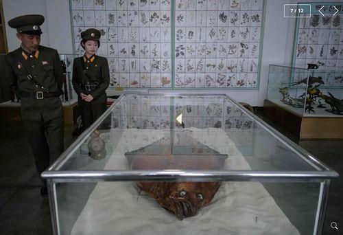 Chùm ảnh trường nam sinh tinh hoa của Triều Tiên khiến cả thế giới ngạc nhiên - Ảnh 7