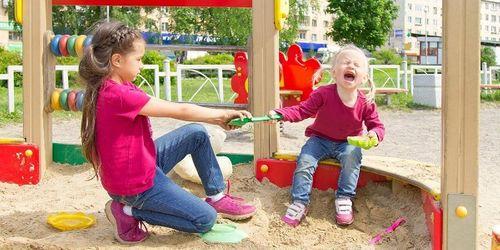 Nghiên cứu: 'Gây lộn' trong nhà giúp trẻ tăng cường thể lực, phát triển tư duy - Ảnh 1