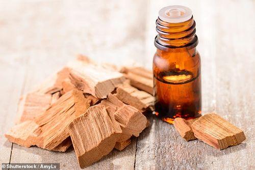Phát hiện loại tinh dầu tự nhiên chữa hói đầu và rụng tóc chỉ trong 6 ngày - Ảnh 1