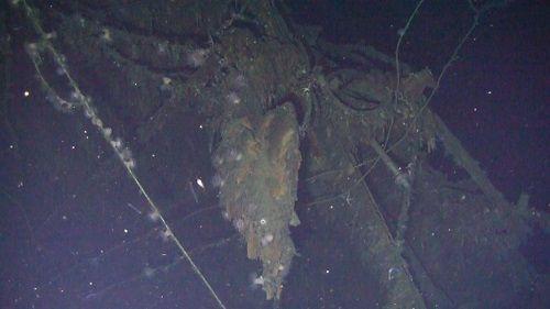 Con tàu kho báu của Nga chìm từ 113 năm trước bất ngờ được tìm thấy ở Hàn Quốc - Ảnh 2