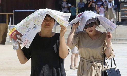 Hàn Quốc trải qua đợt nắng nóng kỷ lục, ít nhất 42 người tử vong - Ảnh 1