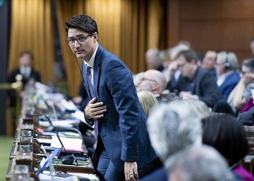 Thủ tướng Canada chính thức xin lỗi vì trót ăn một thanh sô cô la trong cuộc họp - Ảnh 1
