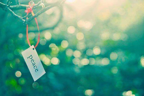 Tặng bạn 5 chữ Vàng lấy lại bình yên trong cuộc sống - Ảnh 1