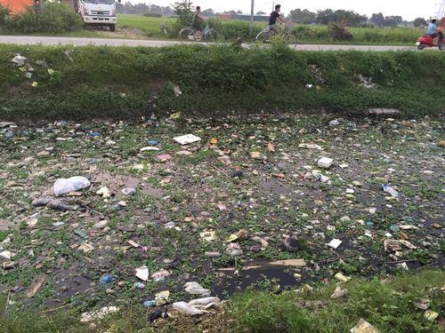 """ChallengeForChange và """"cơn sốt"""" dọn rác lan tỏa ở Việt Nam - Ảnh 3"""