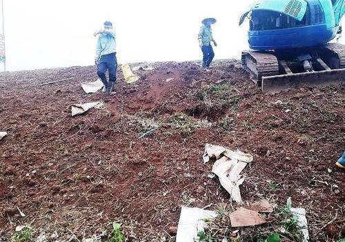 """Long Biên - Hà Nội: Kỳ lạ """"đắp"""" đê bằng...rác, cỏ khô? - Ảnh 1"""