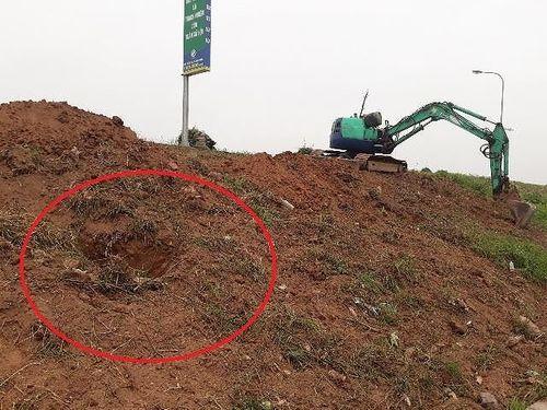 """Long Biên - Hà Nội: Kỳ lạ """"đắp"""" đê bằng...rác, cỏ khô? - Ảnh 2"""