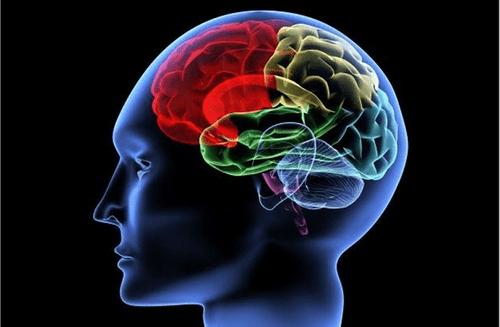 Rút ngắn thời gian hồi phục chức năng cho người di chứng não - Ảnh 1