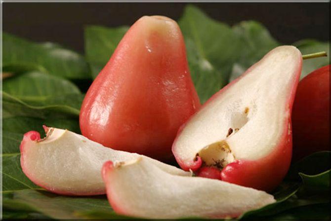 7 lợi ích sức khỏe bất ngờ từ trái roi