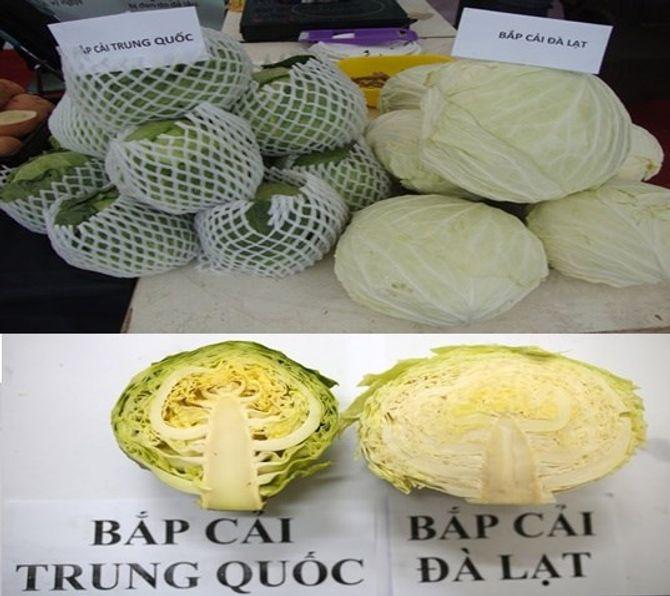 Mẹo phân biệt củ quả Trung Quốc, Đà Lạt - Ảnh 3