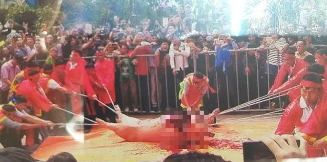 Lễ hội chém lợn ở Bắc Ninh: Máu nhuộm đỏ sân đình 11