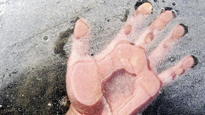 Con người có thể tái sinh nhờ đóng băng cơ thể? - Ảnh 1