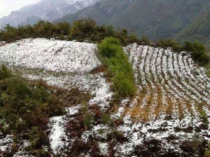 Tuyết rơi ở Lũng Cú Hà Giang chỉ là tin đồn 5
