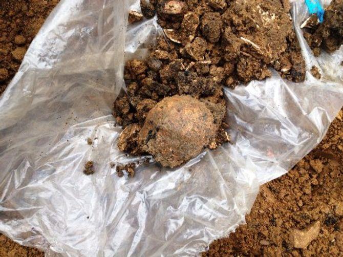 Hãi hùng đào móng nhà, tìm thấy 11 bộ xương