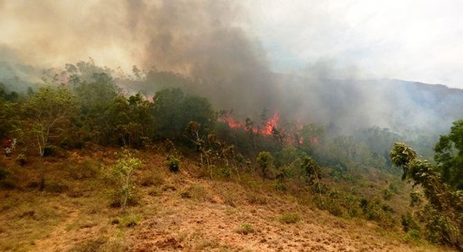 Bình Định: Cháy lớn trên núi Bà Hỏa
