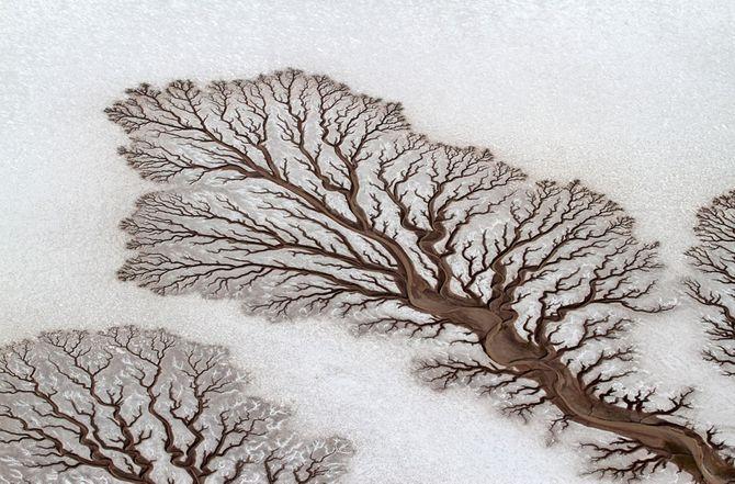 Những bức ảnh tuyệt đẹp của cuộc thi ảnh lớn nhất thế giới 2014 - Ảnh 15