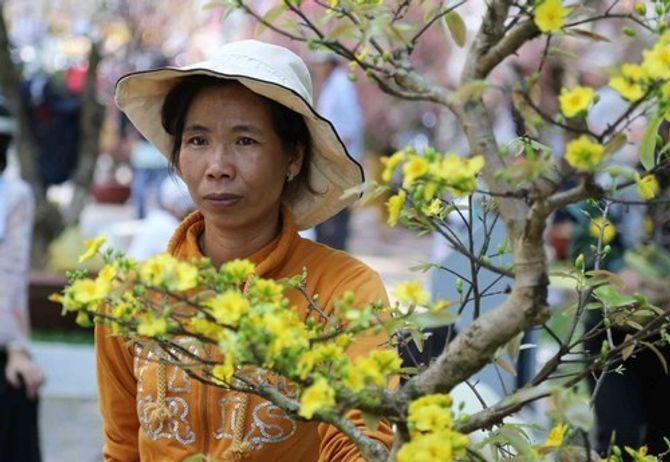 Hoa Tết ế ẩm, người bán hoa khóc ròng - Ảnh 1