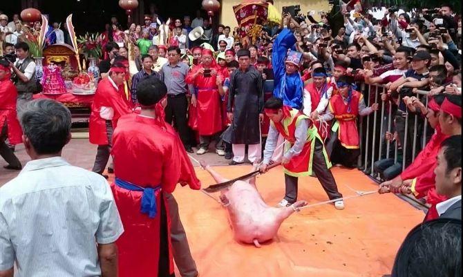 Lễ hội chém lợn: Đi tìm sự thật về Thành hoàng làng Ném Thượng - Ảnh 1