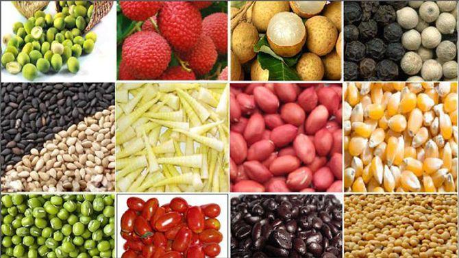Nông sản, thực phẩm xuất khẩu của VN lại bị cảnh báo - Ảnh 1