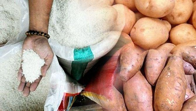 Gạo giả Trung Quốc gây chết người: Mẹo đơn giản để nhận dạng - Ảnh 1