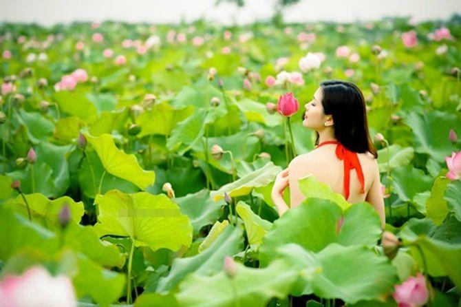 Đẹp mê hồn hình ảnh thiếu nữ Việt áo yếm bên hoa sen - Ảnh 3