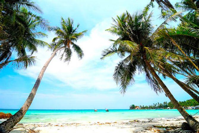 Lịch trình, kinh nghiệm du lịch đảo Nam Du - Ảnh 2