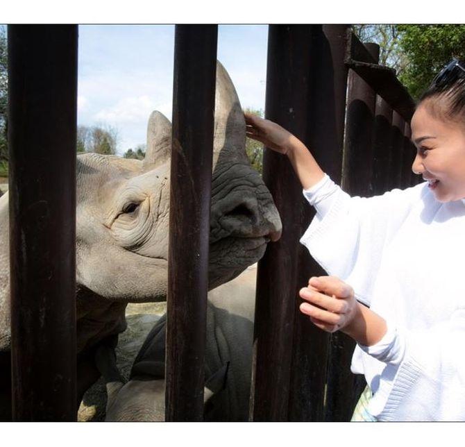 """Thu Minh: """"Đại sứ bảo vệ động vật hoang dã không phải thánh nhân ăn chay"""" - Ảnh 3"""