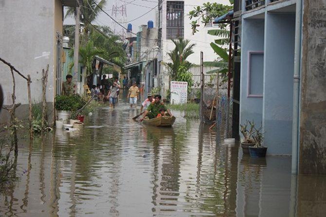 Cảnh báo từ biến đổi khí hậu: TP HCM và các đô thị lớn đối mặt nguy cơ dịch bệnh - Ảnh 1