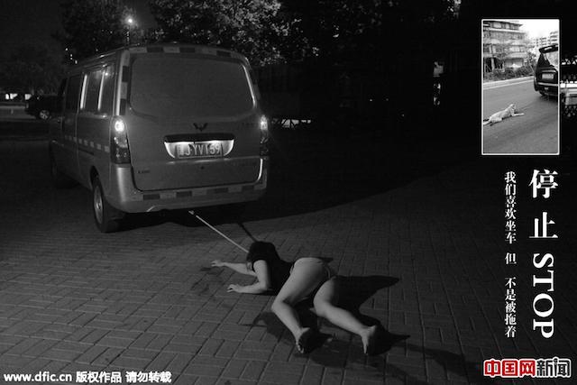 Lặng người trước ảnh của các vũ công hóa thân thành... chó bị bạo hành - Ảnh 5