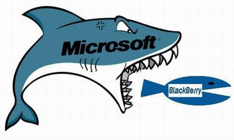"""Vì sao """"Trái dâu đen"""" - BlackBerry chưa bị Microsoft thâu tóm? - Ảnh 1"""