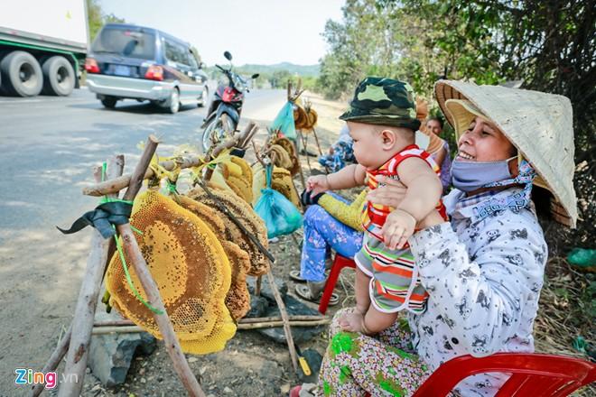 Phú Yên: Đua nhau vào rừng săn mật ong bán giá 1 triệu đồng/lít - Ảnh 11