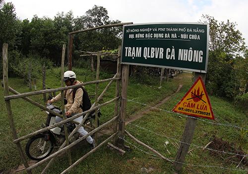 Quảng Nam quy trách nhiệm kiểm lâm Đà Nẵng tiếp tay cho lâm tặc - Ảnh 3