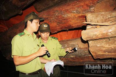 Hành trình trắng đêm bắt gỗ lậu tại Khánh Hòa - Ảnh 3