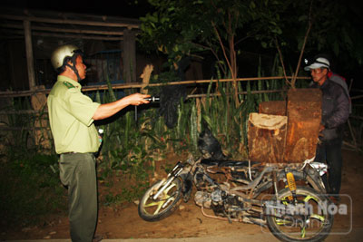 Hành trình trắng đêm bắt gỗ lậu tại Khánh Hòa - Ảnh 1