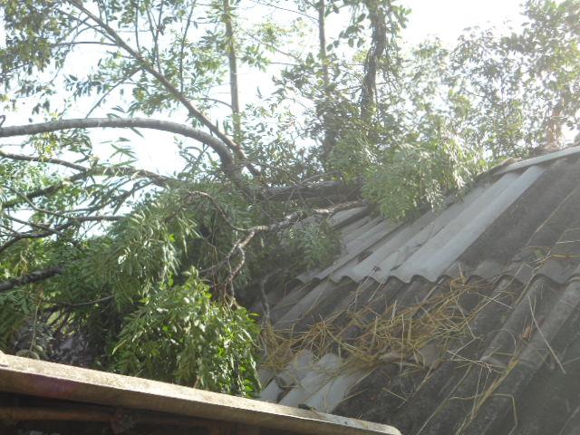 Hà Tĩnh: Lốc xoáy, kèm mưa đá khiến hàng trăm ngôi nhà bị tốc mái - Ảnh 4