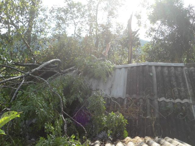 Hà Tĩnh: Lốc xoáy, kèm mưa đá khiến hàng trăm ngôi nhà bị tốc mái - Ảnh 5