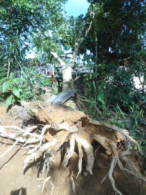 Hà Tĩnh: Lốc xoáy, kèm mưa đá khiến hàng trăm ngôi nhà bị tốc mái - Ảnh 7