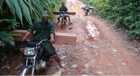 Ngang nhiên vận chuyển gỗ lậu bằng xe máy ở Quảng Nam - Ảnh 1