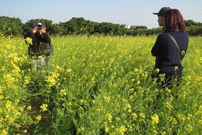 Hà Nội: Kiếm gần 10 triệu đồng/ngày nhờ dịch vụ... chụp ảnh vườn cải - Ảnh 2