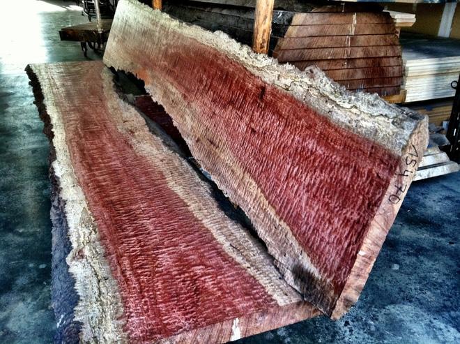 Những cây gỗ tươi quý hiếm bậc nhất thế giới chỉ đại gia mới dám chi tiền mua - Ảnh 4