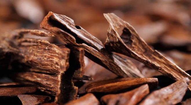 Những cây gỗ tươi quý hiếm bậc nhất thế giới chỉ đại gia mới dám chi tiền mua - Ảnh 10