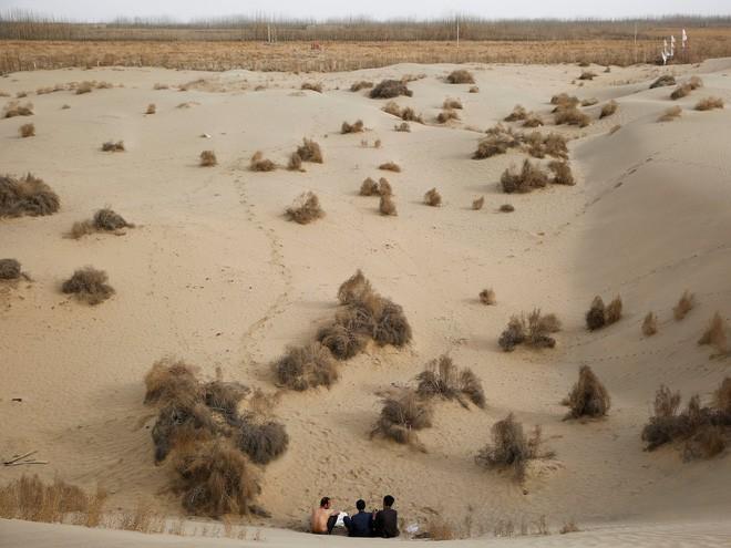 Trung Quốc muốn xây đường ống nước dài 1.000 km nhằm biến sa mạc khổng lồ thành ốc đảo trù phú - Ảnh 1
