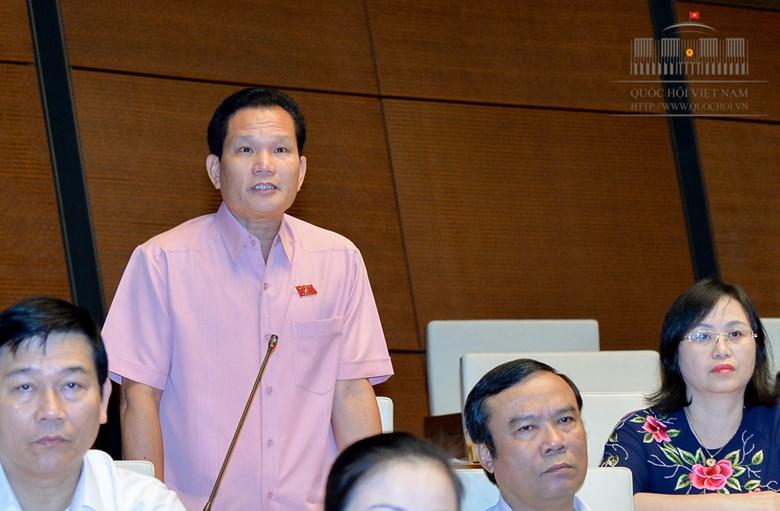 ĐBQH Bùi Sỹ Lợi: Bác sĩ Hoàng Công Lương có thể vô tội - Ảnh 1
